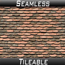 Roof Tiles 08